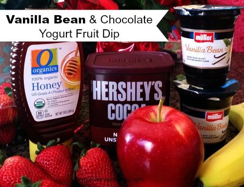 Vanilla Bean & Chocolate Yogurt Fruit Dip - Delicious Snack