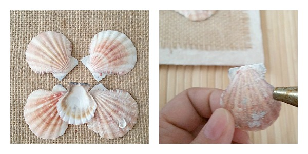 gluing-seashells-wall-art
