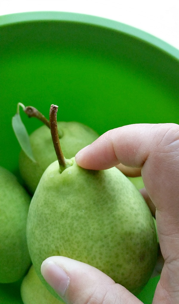 Press the neck to check for pear ripeness