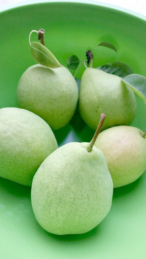 Ripen pears in room temperature