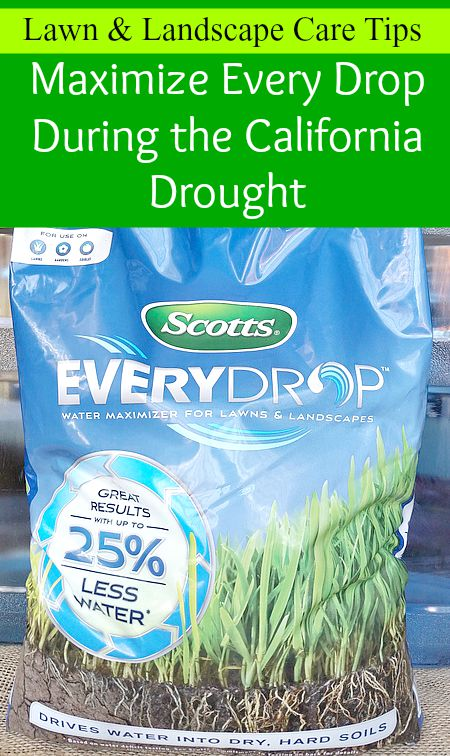 Tips to maximize every drop during a California drought.