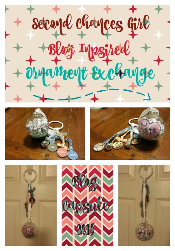 Blog Capsule Ornament
