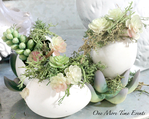 Succulent Easter Egg Centerpiece