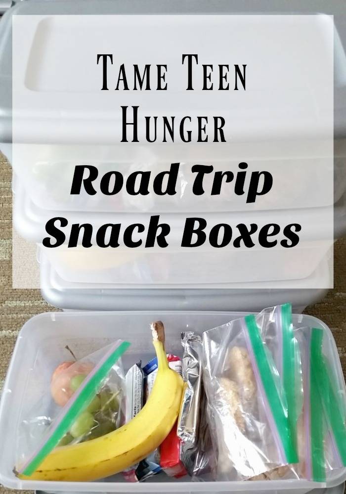 Tame Teen Hunger - Road Trip Snack Boxes
