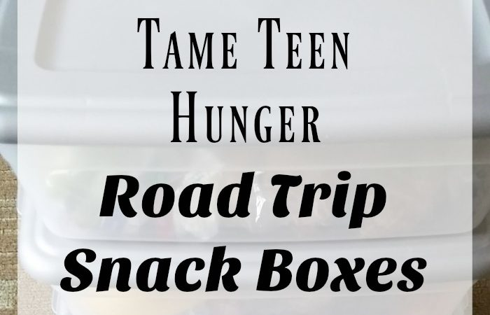 Tame Teen Hunger – Road Trip Snack Boxes