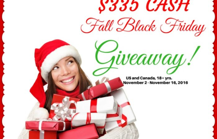Money, Money, Money! Money! – $335 Fall Black Friday Giveaway!