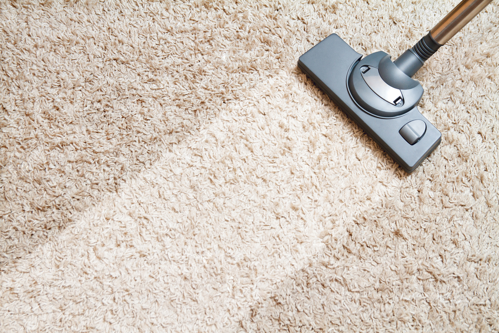 Learn How To Clean Carpets And Rugs Like A Pro