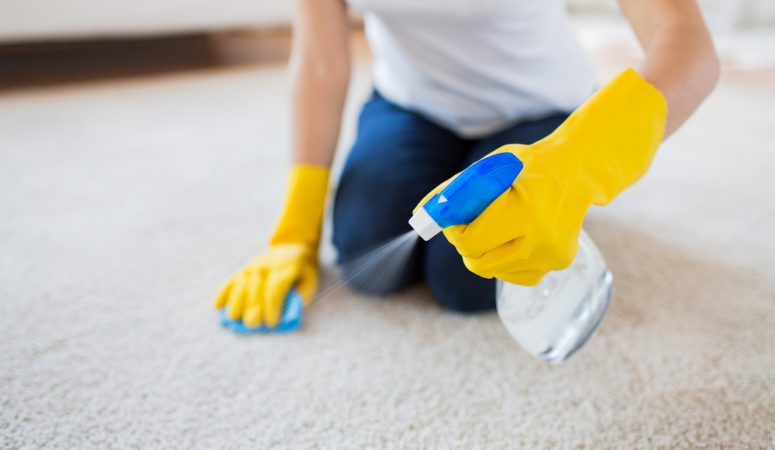 Learn How to Clean Carpets and Rugs Like A Pro!