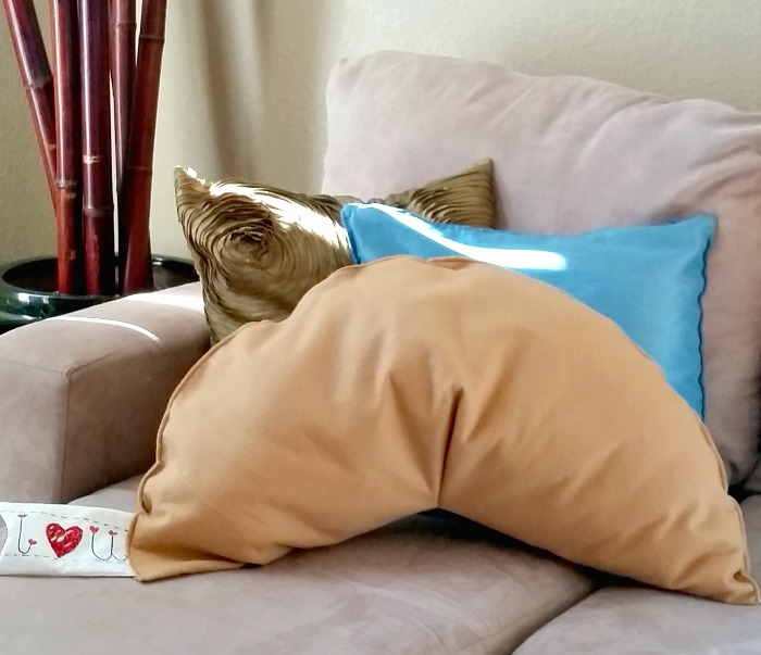 fortune cookie pillow sofa