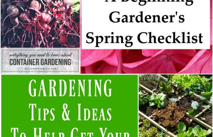 Gardening Tips and Ideas to Help Get Your Garden Started