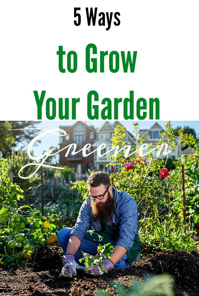 5 Ways to Grow a Greener Garden
