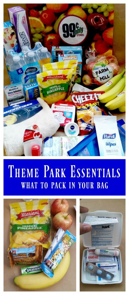 Items you NEED in your bag to make for a smooth theme park day. Theme park essentials and tips on packing.
