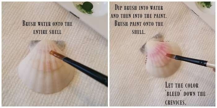 DIY Painted Sea Shells - How to paint sea shells
