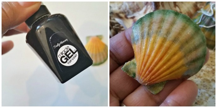 How to paint sea shells sealant