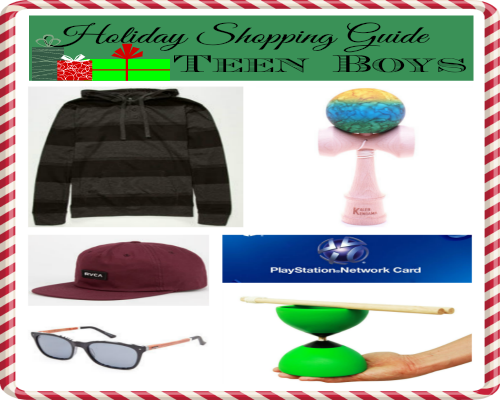 2014 Holiday Shopping Guide for Teen Boys