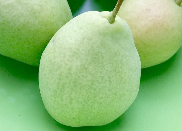 Summertime Pear Dessert Recipes