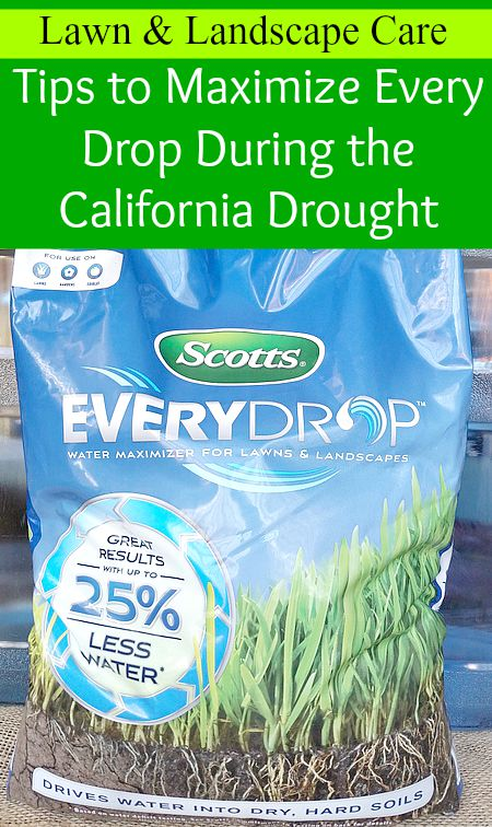 Tips to maximize every drop during the California drought