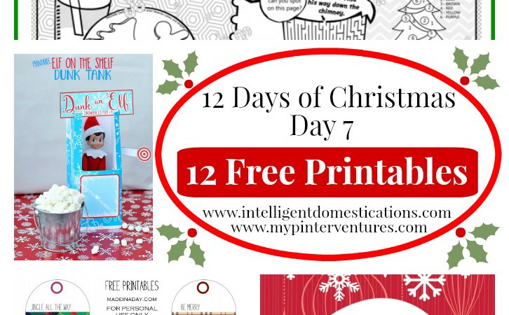 picture regarding 12 Days of Christmas Printable titled 12 Times of Xmas - No cost Xmas Printable