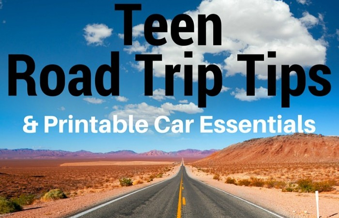 Teen Road Trip Tips & Printable Car Essentials + Giveaway!