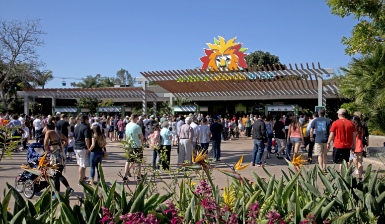 Roaring Forward: San Diego Zoo & Nighttime Zoo Centennial Celebration