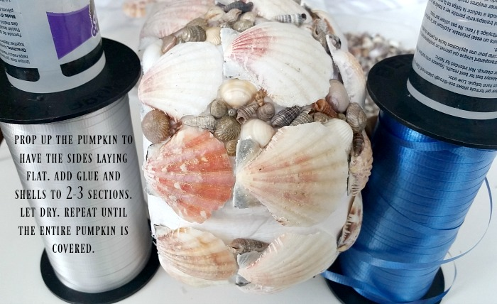 Seashell pumpkin - Add small seashells