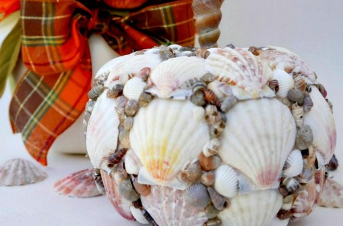 Seashell Pumpkin – DIY Coastal Fall Decor Pumpkin