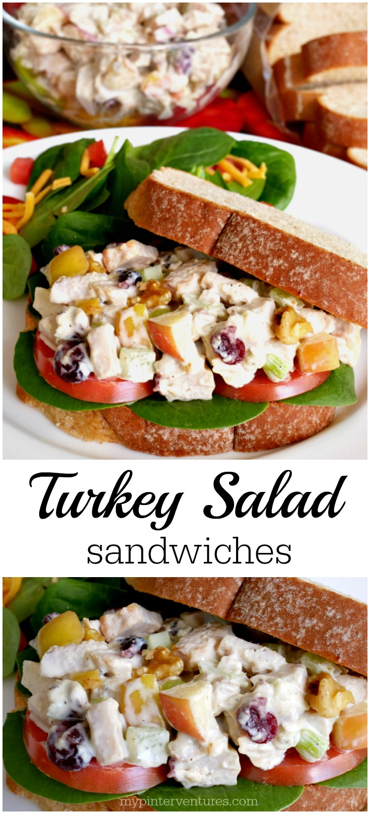 Simple turkey salad sandwiches - leftover Thanksgiving turkey, cranberries, celery, apples, & seasonings. #ad #99yourthanksgiving