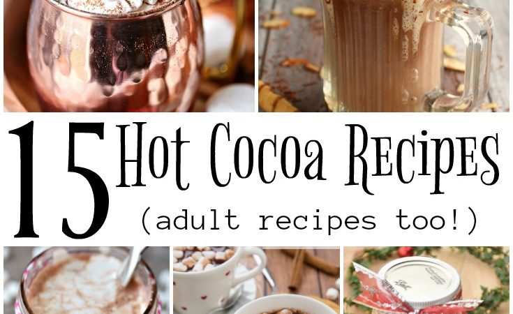 15 Ho Cocoa Recipes - flavored and adult spiked versions