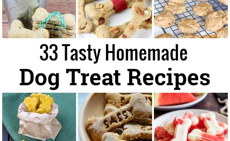 33 Tasty Homemade Dog Treat Recipes for International Dog Biscuit Appreciation Day.