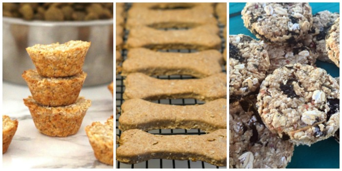 Homemade Dog Treat Recipes - coconut oatmeal pupcakes, homemade dog treats, kale and apple oat treats