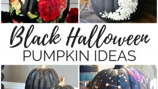 16 Black Halloween Pumpkin Ideas