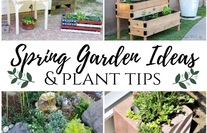 10+Spring Gardening Ideas & Plant Tips – MM #247