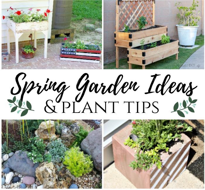 10 Spring Gardening Ideas Plant Tips Mm 247 My Pinterventures