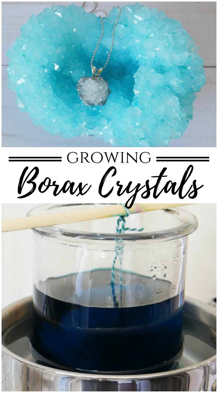 Growing Borax crystals