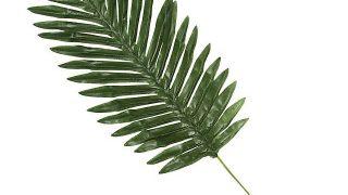 Medium Polyester Palm Leaves